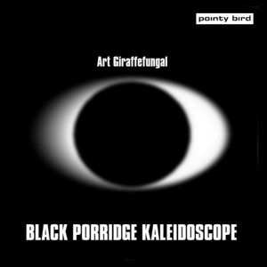 Black Porridge Kaleidoscope
