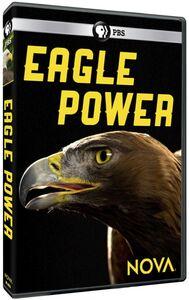 Nova: Eagle Power
