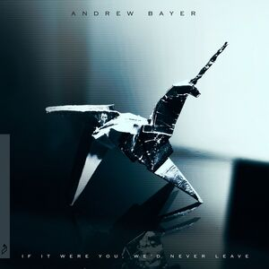 Andrew Bayer - If It Were You We'd Never Leave