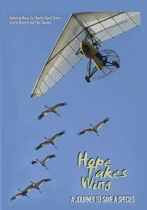 Hope Takes Wing