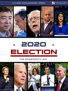2020: The Democratic Bid