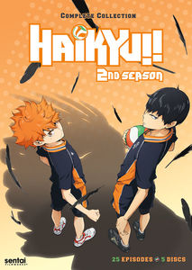 Haikyu: Season 2