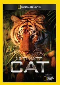 Ultimate Cat