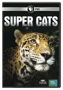 NATURE: Super Cats