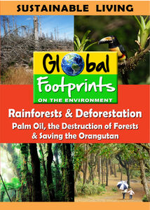 Rainforests & Deforestation, Palm Oil & Saving The Orangutan