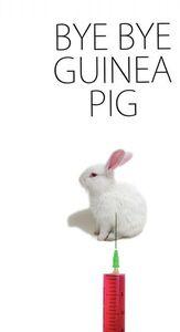Bye Bye Guinea Pig