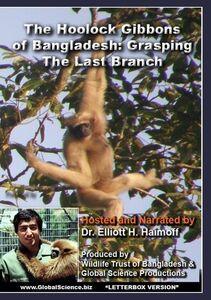 Hoolock Gibbons of Bangladesh: Grasping the Last