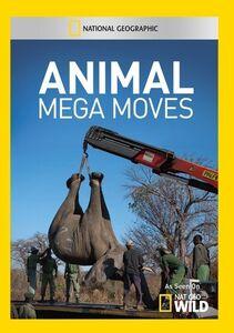 Animal Mega Moves