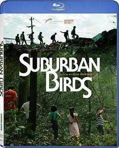 Suburban Birds