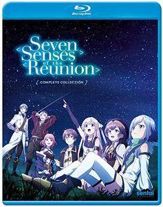 Seven Senses Of The Reunion