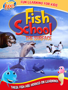 Fish School: The Surface