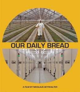 Our Daily Bread