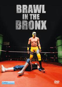 Brawl In The Bronx