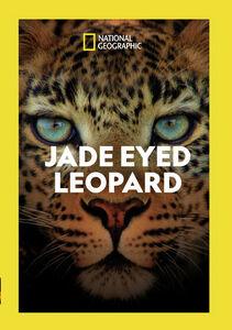 Jade Eyed Leopard