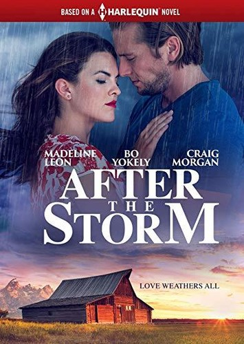 After the Storm (Harlequin)