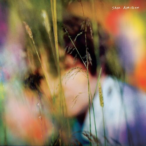 Sam Amidon - Sam Amidon