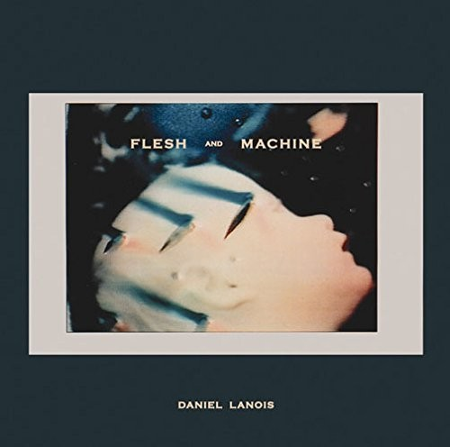 Flesh & Machine [Import]