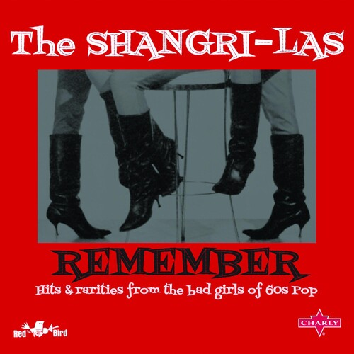 Remember: Hits & Rarities From The Bad Girls Of Pop