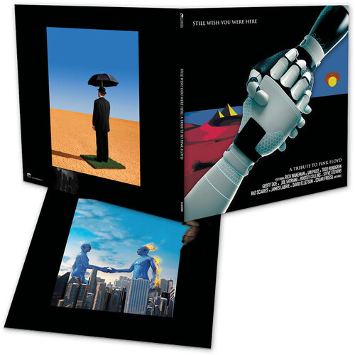 Pink Floyd Tribute: Still Wish You Were Here /  Various