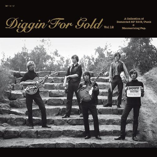 Diggin' For Gold 12 (Various Artists)