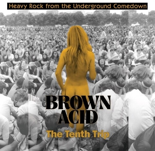 Brown Acid - The Tenth Trip /  Various
