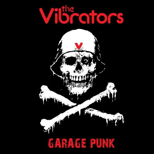 Vibrators - Garage Punk (Colv) (Ltd) (Pnk)