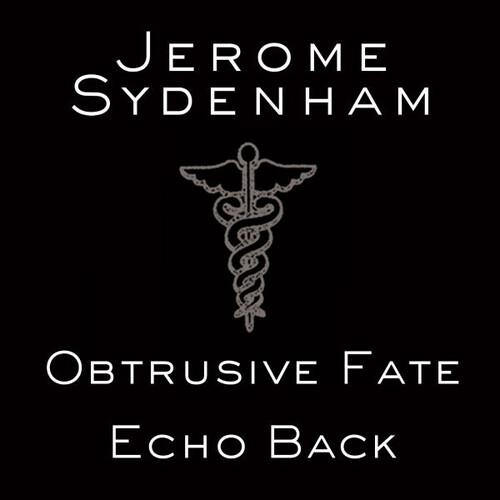 Echo Back