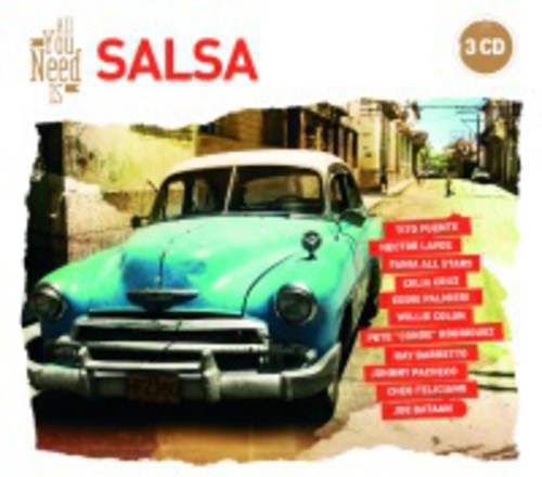 All You Need Is: Salsa [Import]