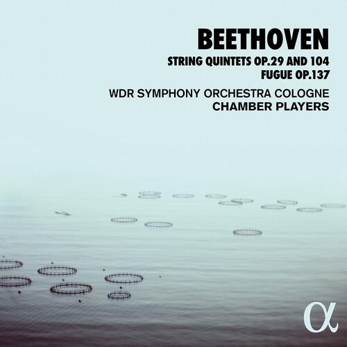String Quintets 29 & 104
