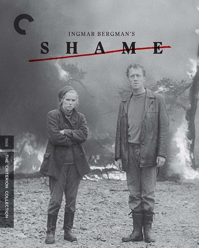 Shame (Criterion Collection)