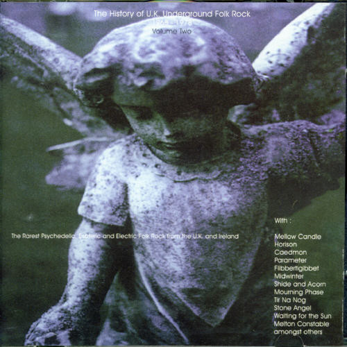 History Of Uk Folk Rock 2 /  Various [Import]